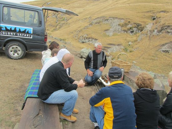 Akaroa Seal Colony Safari: Coffee/Tea and muffins