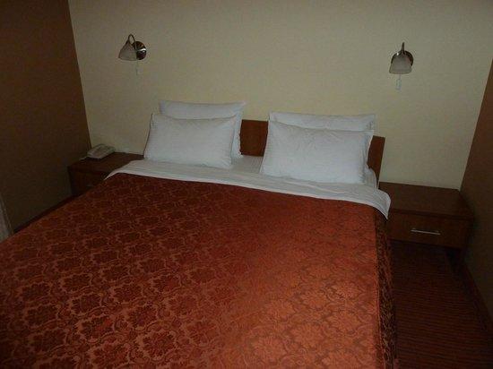 Belgrade City Hotel: Room 2