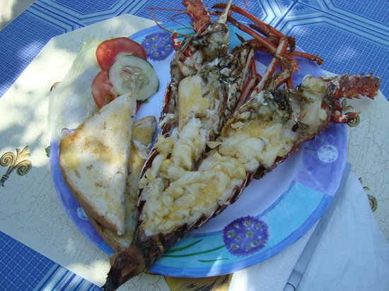 Cheap Thrill Corner: Fresh Grilled Lobster....From the ocean to the table!
