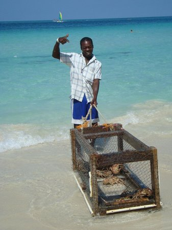 Cheap Thrill Corner : RJ and his lobster trap