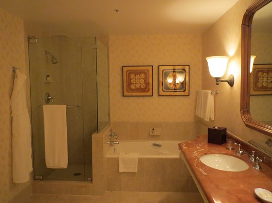 Park Hyatt Aviara Resort: Bathroom large enough to do the waltz