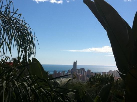 Barcelo Asia Gardens Hotel & Thai Spa: vistas desde la habitación