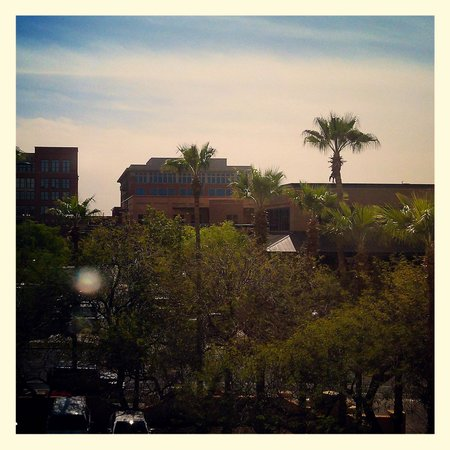 Tempe Mission Palms Hotel and Conference Center: View from room 3015
