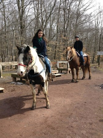 Deer Path Riding Stable: Our horses, Daisy (4) and Benji (20).