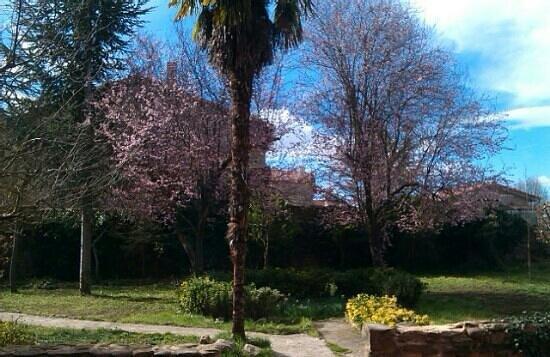 Palacio de los Alvarado: terraza - jardín