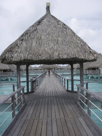 St. Regis Bora Bora Resort: dock to our room, borrow bikes for the day