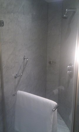 The Park Tower Knightsbridge, A Luxury Collection Hotel, London: shower
