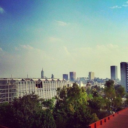 Forum Buenavista : vista desde el cafe V