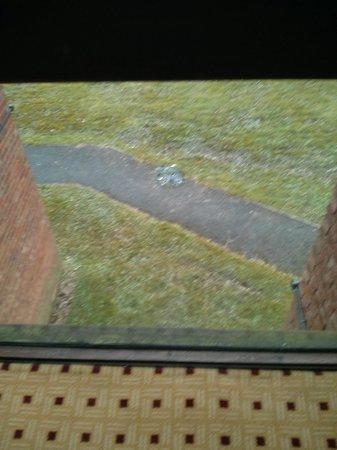 โรงแรมฮิลตัน แบรคเนลล์: Smashed glass on a stairwell looking towards the dual carriageway