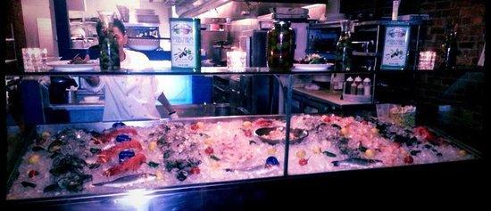 Blue Water Seafood : Raw Bar Display