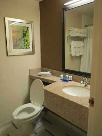 Fairfield Inn & Suites San Jose Airport: Simple bathroom