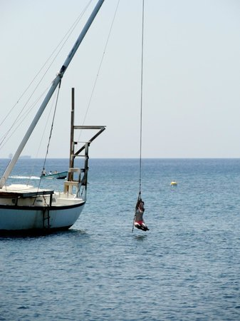Half Moon Resort: The rope swing.