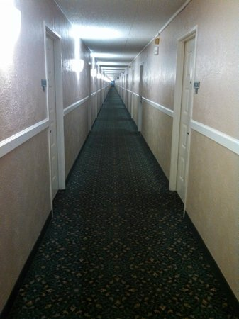 La Quinta Inn Indianapolis Airport Lynhurst: Longest hallways ever.  Reminded me of The Shining