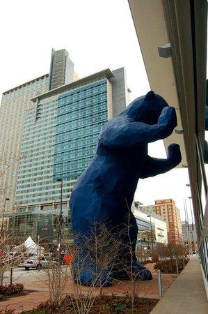 Big Blue Bear Picture Of Hyatt Regency Denver At Colorado