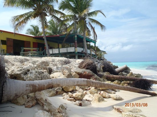 West End Village, Anguila: Gwen's Beach Bar