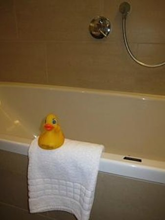 Skihotel Galzig: You never knew where the rubber ducky would be each day!