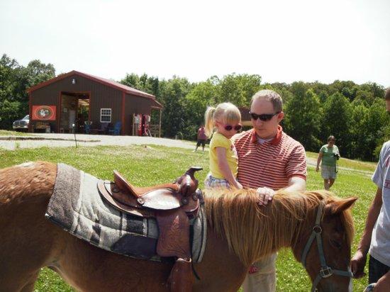Santa's Stables : Pony Ride