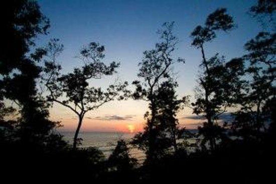 Tiskita Jungle Lodge: The view of the canina!