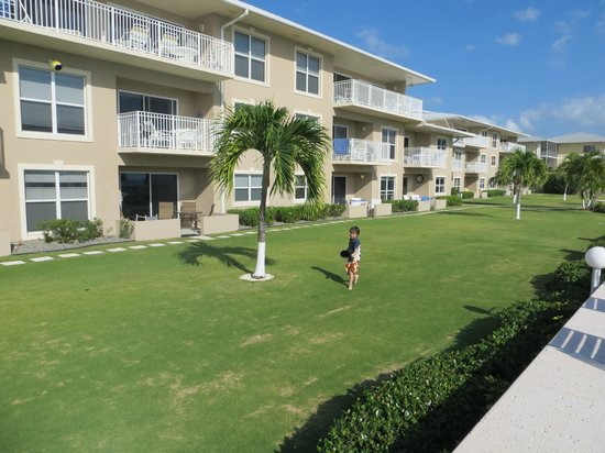 Christopher Columbus Condos: Playing ball on the manicured lawn