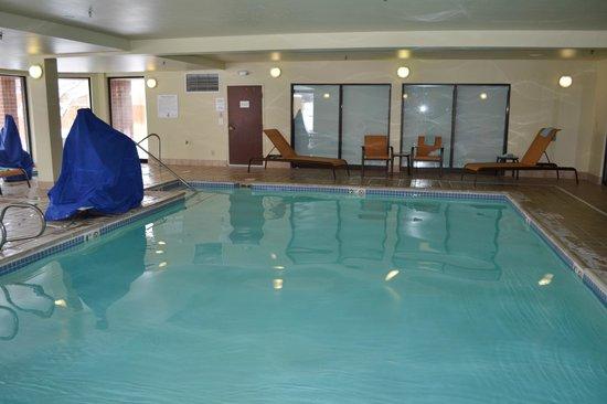 Courtyard Denver Southwest/Lakewood : Swimming Pool