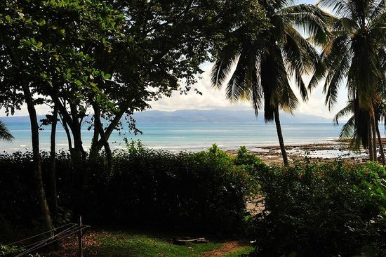 Casa Bambu Resort: View from Linda by guest James McCraw