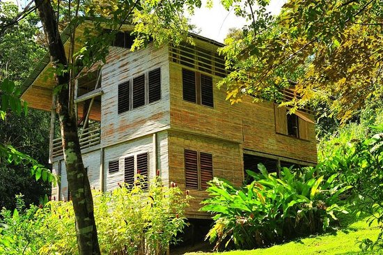 Casa Bambu: Casa Sonrisa by guest James McCraw
