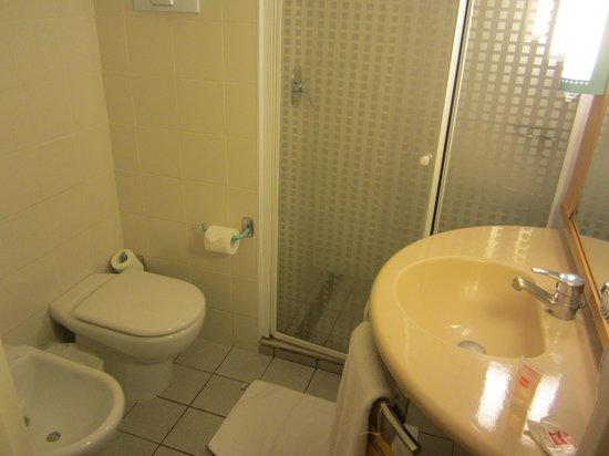 Ibis Buenos Aires: Bathroom