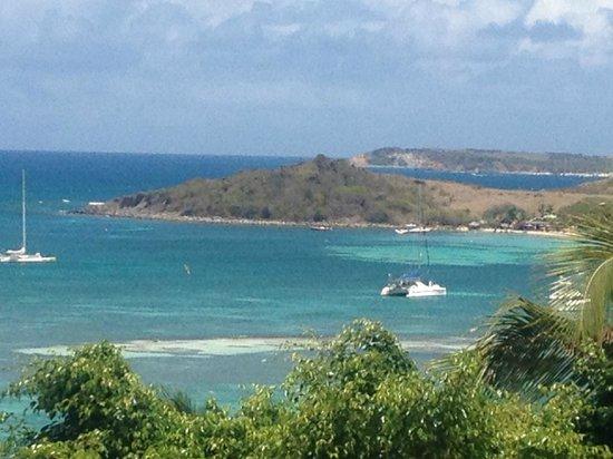 Karibuni Lodge: View of Pinel Island
