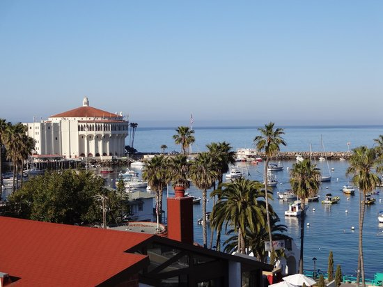 The Avalon Hotel: View from Rooftop Patio