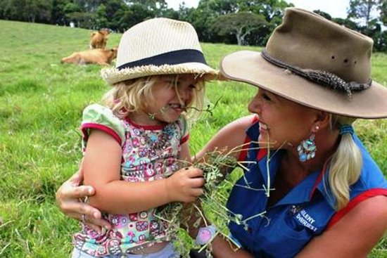 ‪‪Maleny Dairies‬: Our farm tours are heaps of fun for the kiddies‬