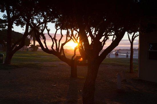Camp's Bay Beach 사진
