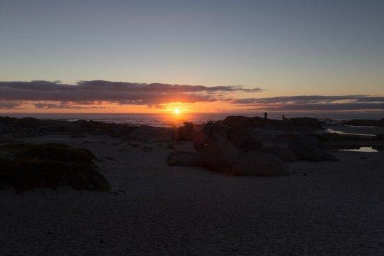 Camp's Bay Beach照片