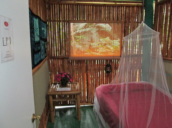 Wild Ginger Inn Hotel & Hostel: Private Outdoor Hostel Room