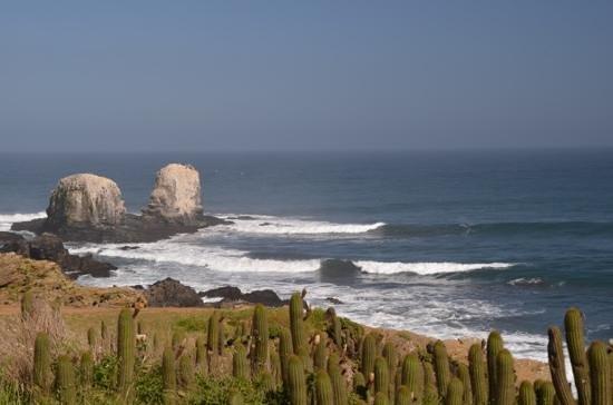Hostal Pichilemu Casa Verde: punta de Lobos, minutes from casa verde