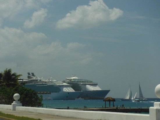 Alicia's Bed & Breakfast: Cruise ships