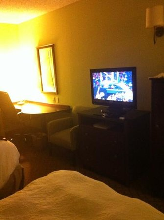 Hampton Inn & Suites Orlando - South Lake Buena Vista: tv & desk area