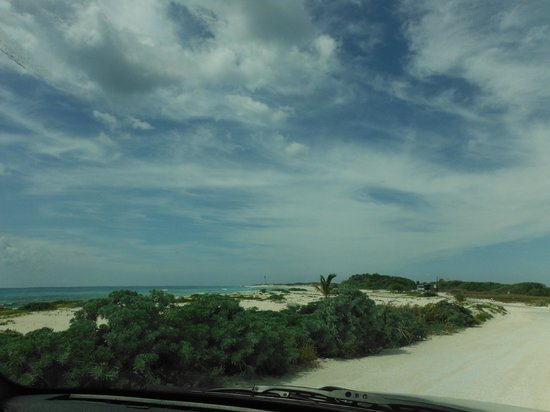Alicia's Bed & Breakfast: Miles and  miles of beach