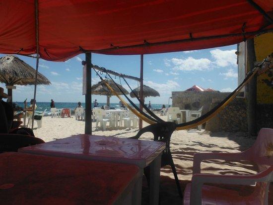 Alicia's Bed & Breakfast: Relax at Rastas in a hammock