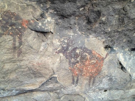 Grand Canyon Jeep Tours & Safaris: A photo from the Cave Painting tour we went on...