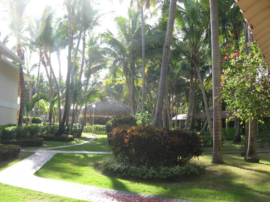 Grand Palladium Palace Resort Spa & Casino: Végétation