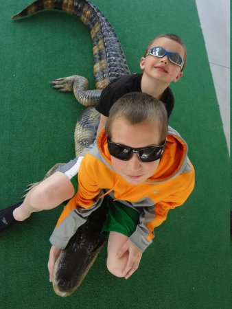 Everglades City Airboat Tours: other picture opportunities  while waiting