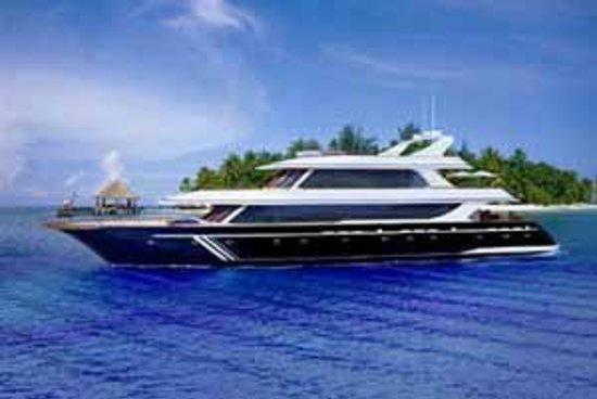 Dive The World Maldives: Ocean Divine