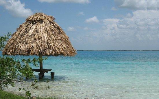 Ecocamping Yaxche : Un hermoso lugar para acampar y recrearte.