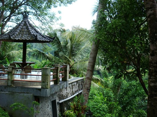Beji Ubud Resort: View of the pool from our room