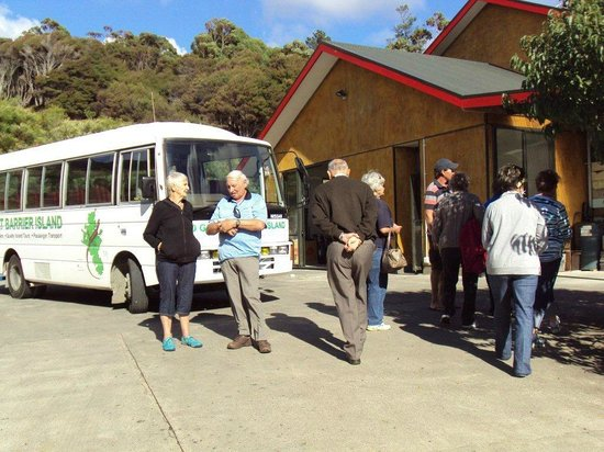 Go Great Barrier Island - Day Tours: At the honey factory