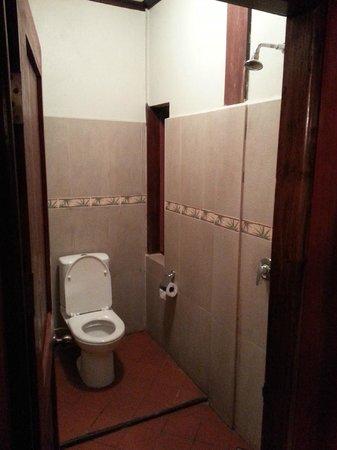 Lotus Villa Boutique Hotel: Bathroom/shower combo