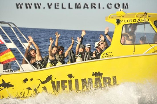 Vellmari Diving Center: Formentera, Velmari, Embarcaciones