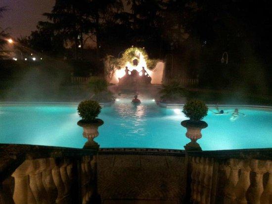 Abano Ritz Terme: In piscina di notte, a 36°, sotto la pioggia.  Un sogno.