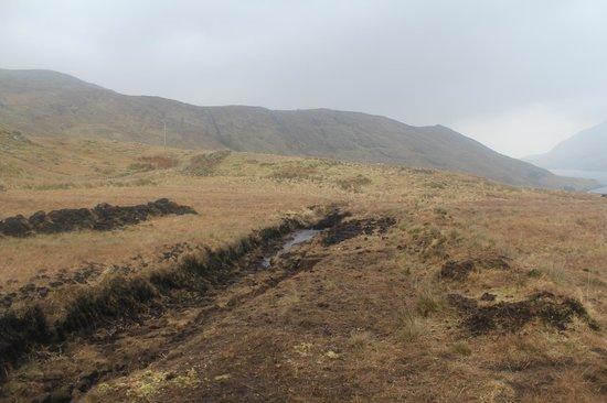 Killary Sheep Farm: Peat Bog