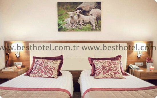 Apart hotel best for Best aparthotels